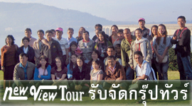 Agent Private Group Tour Service